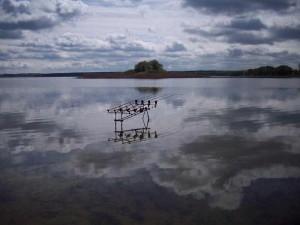 Longe Range Fishing