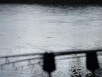 CS Roc im Regen